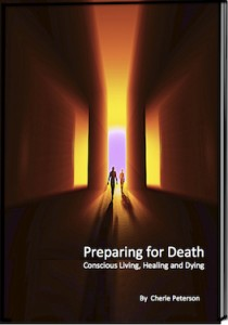 E-book  cover Preparing for Death thumb